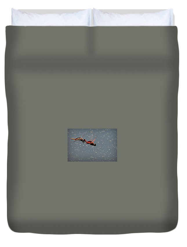 Dragon Duvet Cover featuring the photograph Fly United by Reid Callaway