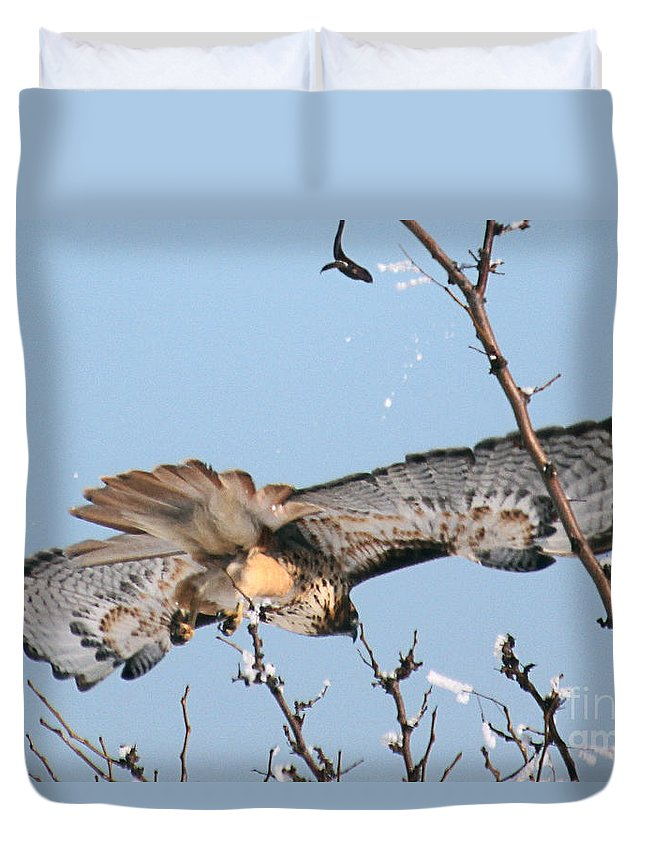Colorado Duvet Cover featuring the photograph Flyby by Bob Hislop