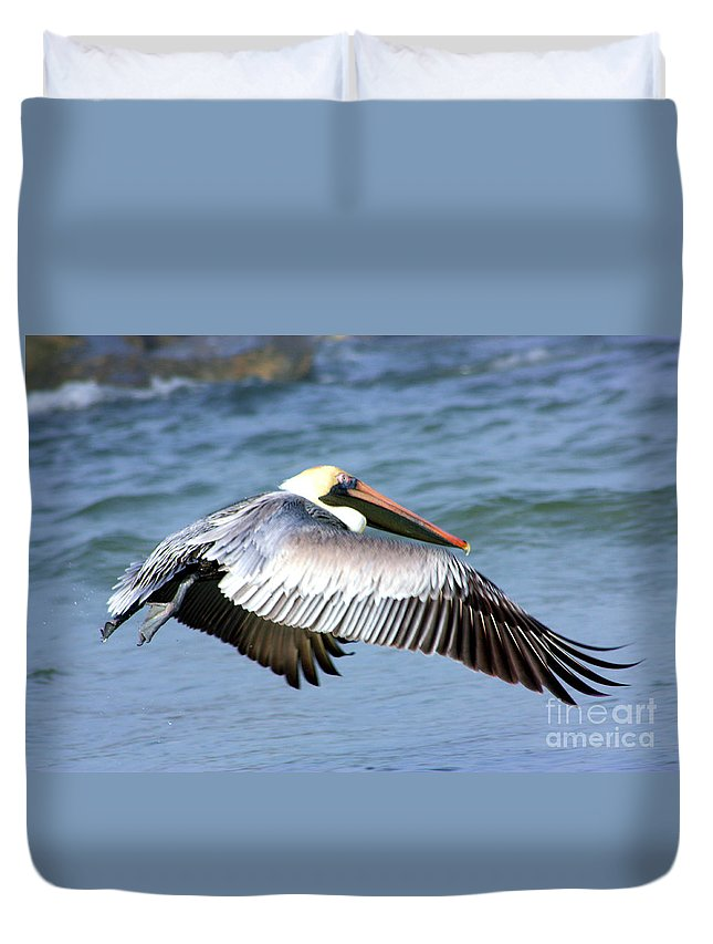 Birds Duvet Cover featuring the photograph Flying Florida Pelican by Nick Gustafson