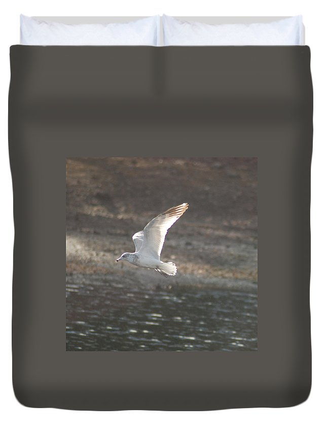 Seagull Duvet Cover featuring the photograph Flying Free by Richard Bryce and Family