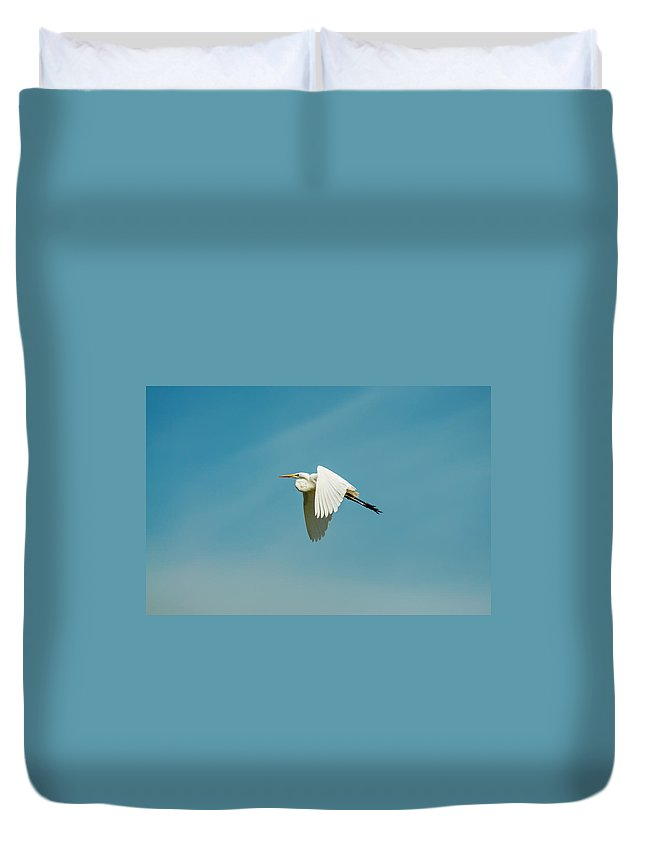 Egret Duvet Cover featuring the photograph Flying Great Egret by Jess Kraft