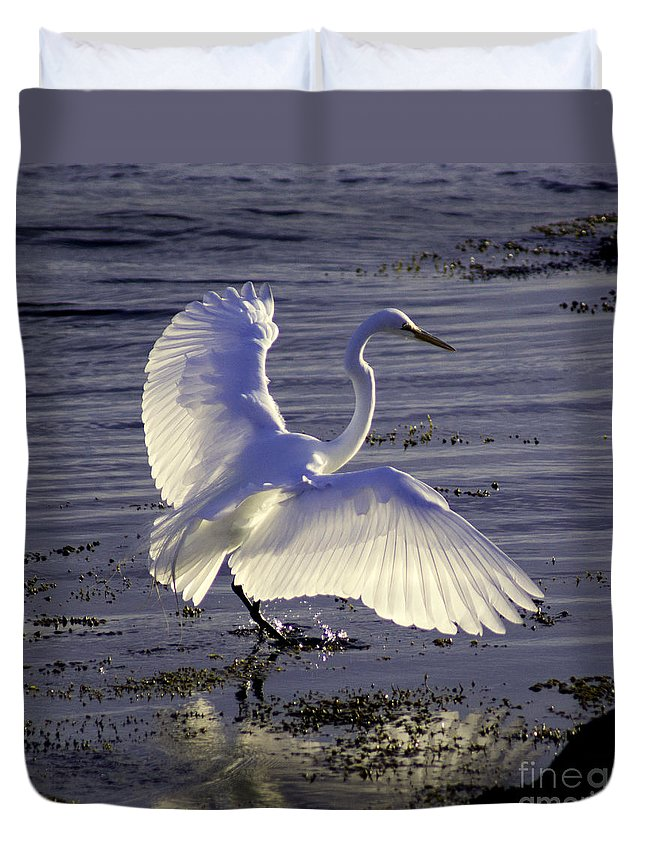 Animal Duvet Cover featuring the photograph Flying In V1 by Joe Geraci