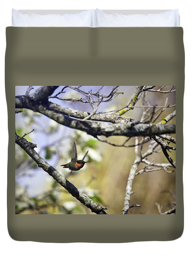 Male Duvet Cover featuring the photograph Flying Jewel by Michael Dougherty
