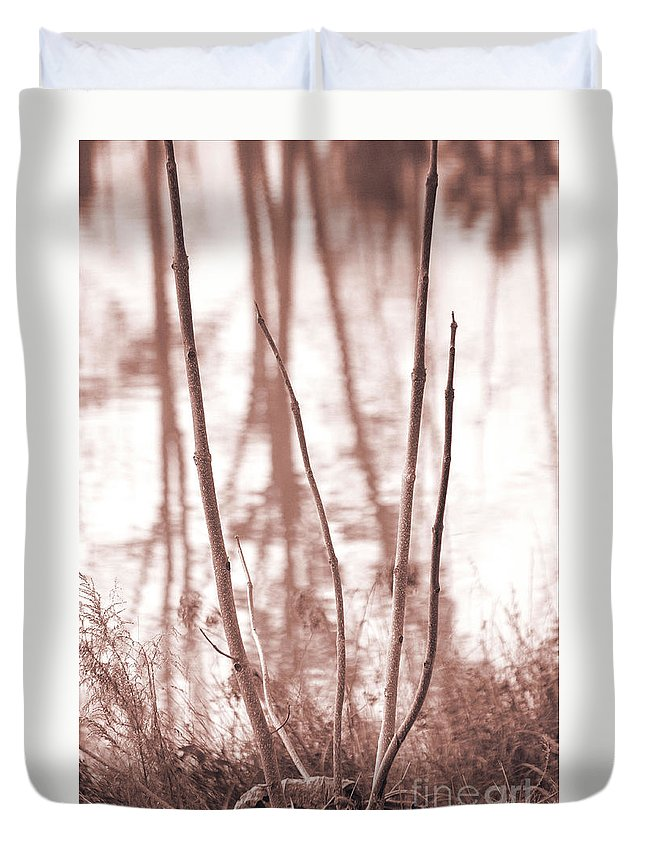 Foggy Forest Duvet Cover featuring the photograph Foggy Autumn Morning by Luv Photography