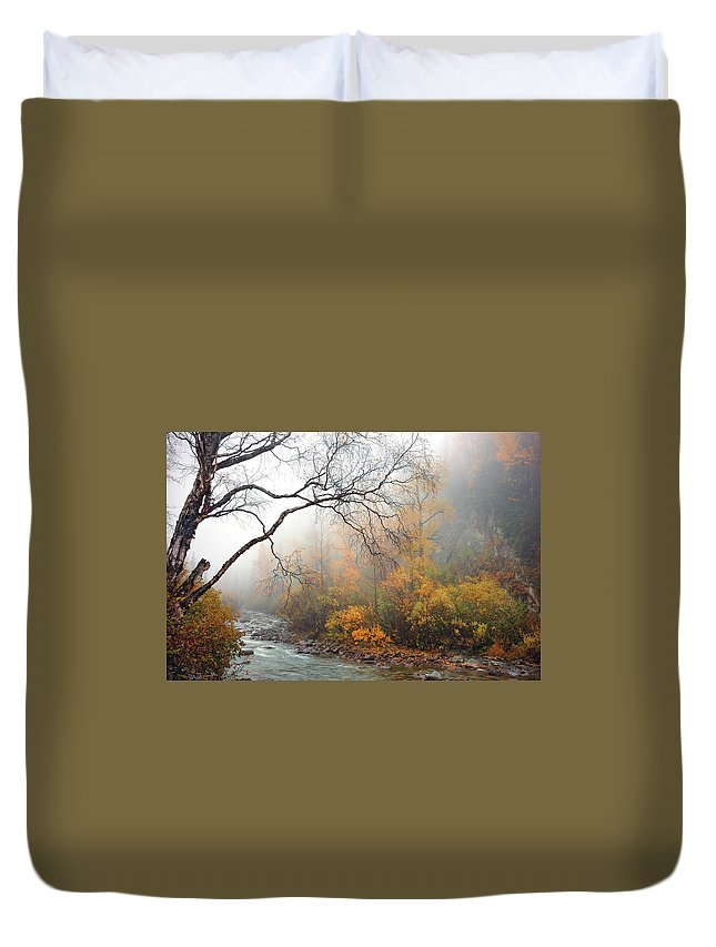 Nature Duvet Cover featuring the photograph Foggy Autumn by Ron Day