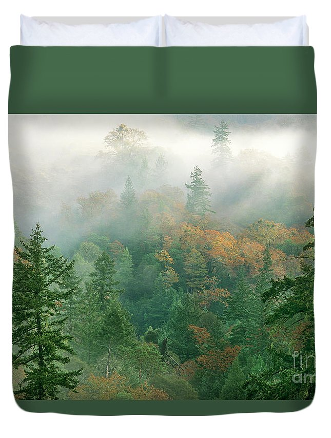 North America Duvet Cover featuring the photograph Foggy Morning In Humbolt County California by Dave Welling