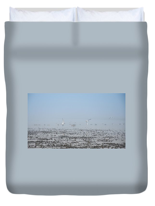 Fog Duvet Cover featuring the photograph Foggy Seabirds Parksville Beach by Roxy Hurtubise