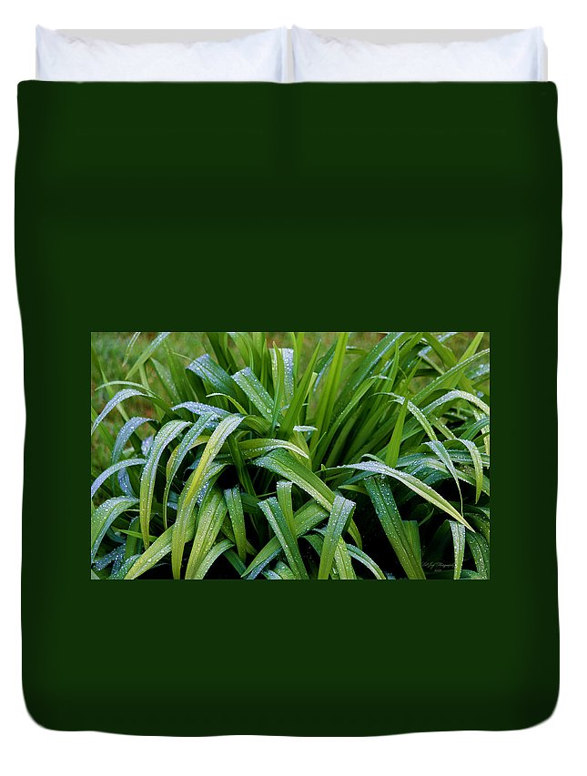 Foliage Duvet Cover featuring the photograph Foliage In The Rain II by Jeanette C Landstrom