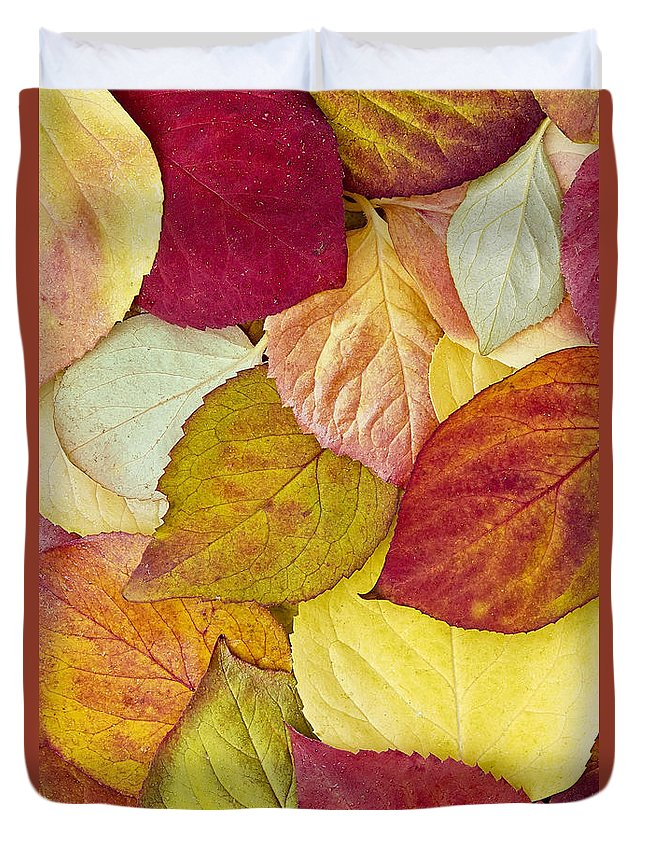 Fall Duvet Cover featuring the photograph Foliage Quilt by Alan L Graham