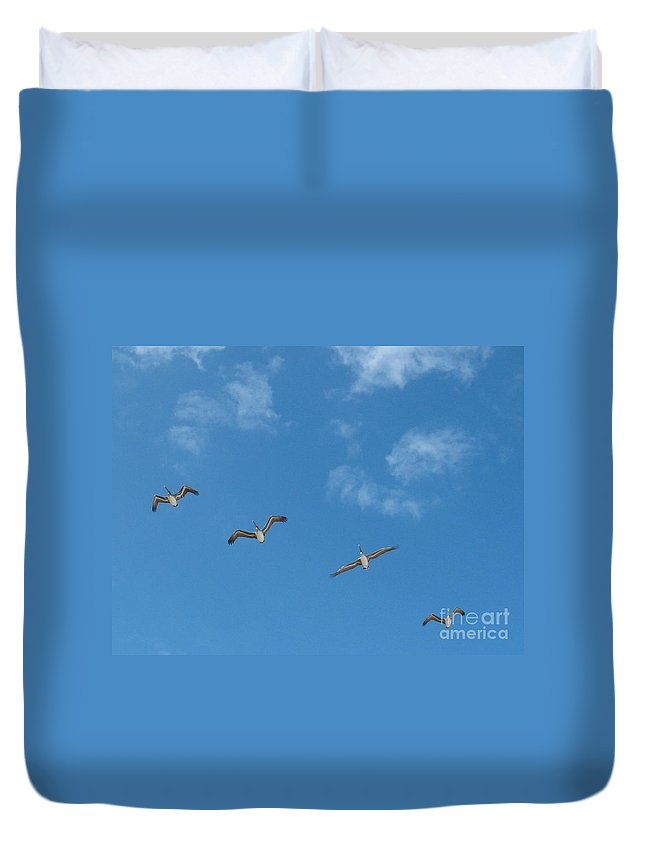 Pelicans Duvet Cover featuring the photograph Follow The Leader by Keri West