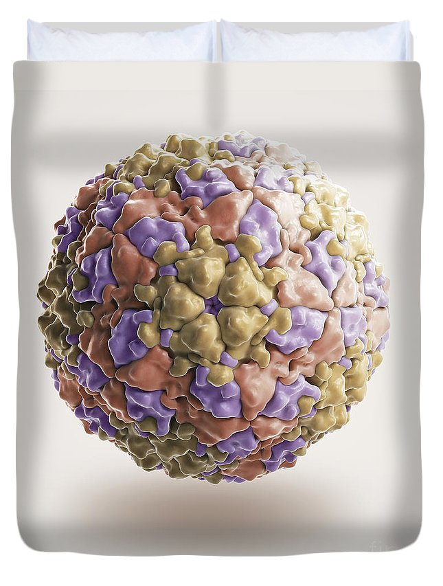 Foot-and-mouth Disease Virus Duvet Cover featuring the photograph Foot-and-mouth Disease Virus by Science Picture Co