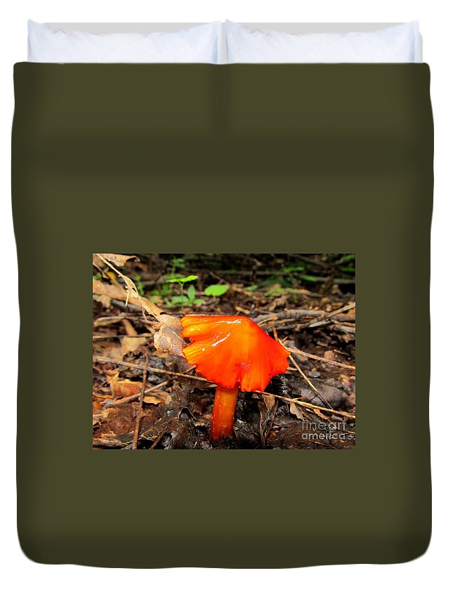 Brilliant Mushrooms Red Mushrooms Red Fungi Bright Orange Fungi Colorful Fungi Forest Flare Preserve Biodiversity Forest Ecosystem Flora Rare Nature Rare Fungi Rare Mushrooms Exotic Flora Exotic Fungi Divine Design In Nature Prints Fine Art America Noth American Mushrooms Of The Mid Atlantic Northeast Appalachian Fungi Species Hygrocybes Beautiful Beings Of Natural Design Concepts Seasonal Forest Fungi Decidious Woodland Flora Mycology Sierra Club Nature Conservancy Duvet Cover featuring the photograph Forest Fungi Flare by Joshua Bales
