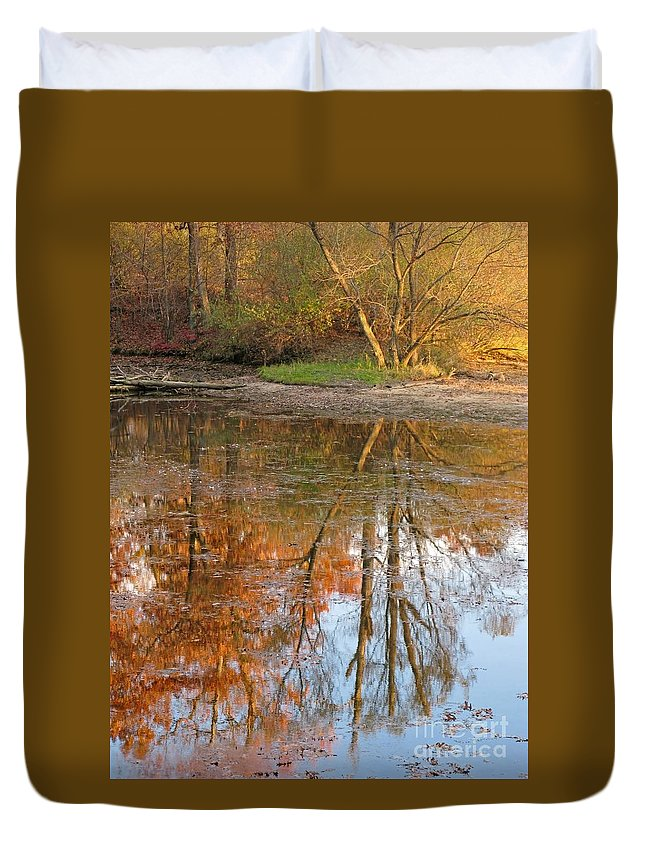 Autumn Duvet Cover featuring the photograph Forest Glow by Ann Horn