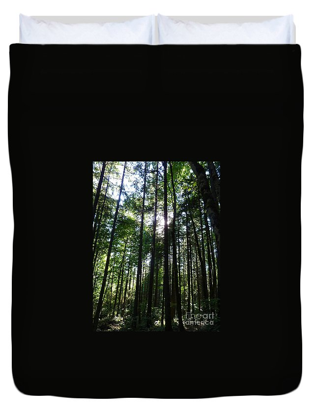 Trees Duvet Cover featuring the photograph Forest Light by Rain Shine