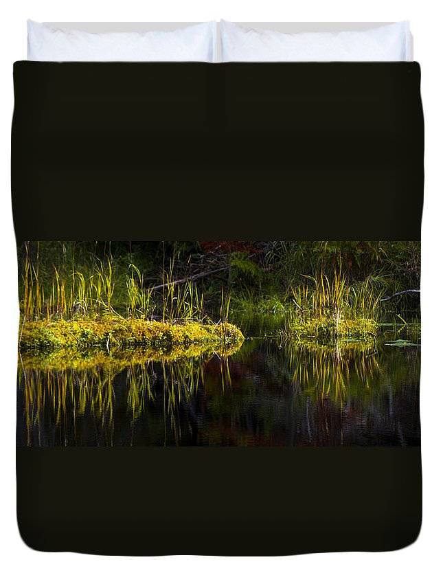Priest Lake Duvet Cover featuring the photograph 131005b-044 Forest Marsh 1 by Albert Seger