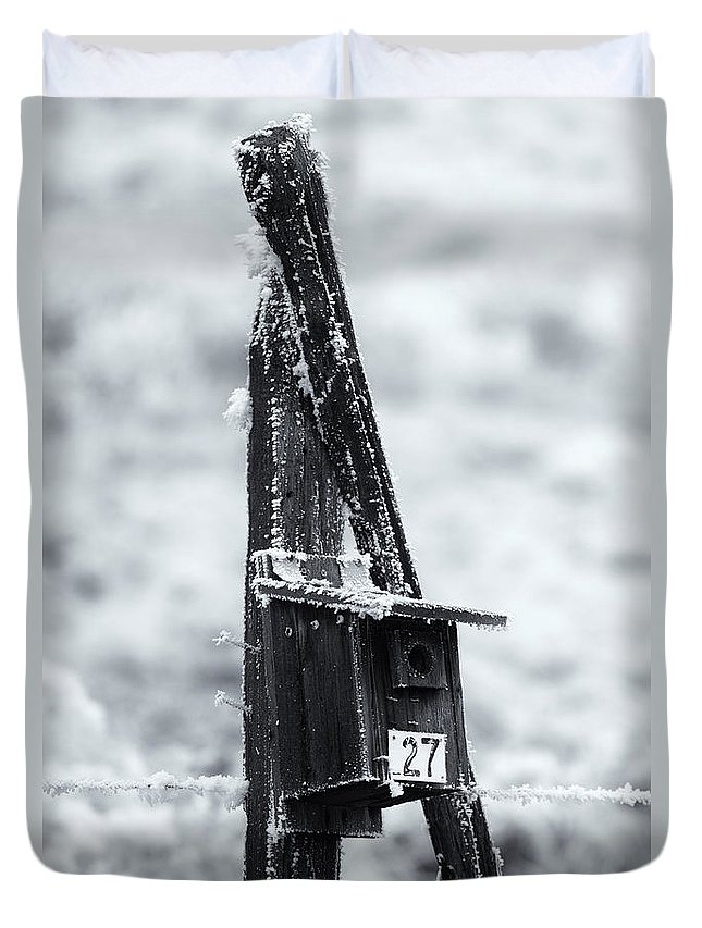 Bluebird House Duvet Cover featuring the photograph Forgotten Summer Home by Mike Dawson