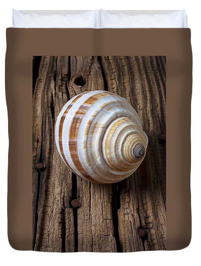 Sea Shell Duvet Cover featuring the photograph Found Sea Shell by Garry Gay