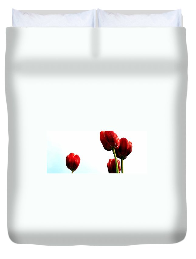 Hollander Duvet Cover featuring the photograph Four Red Tulips by Michelle Calkins