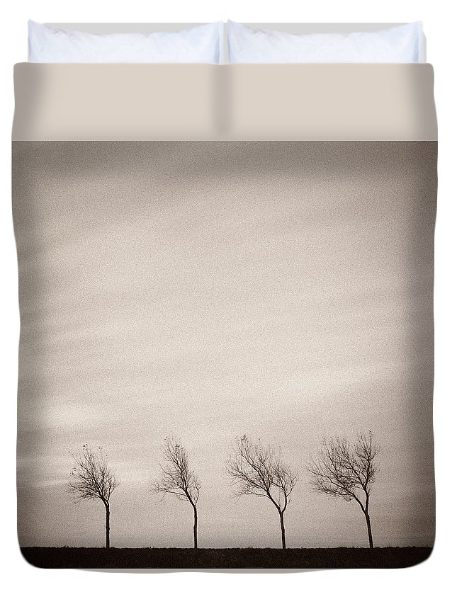 Trees Duvet Cover featuring the photograph Four Trees by Dave Bowman