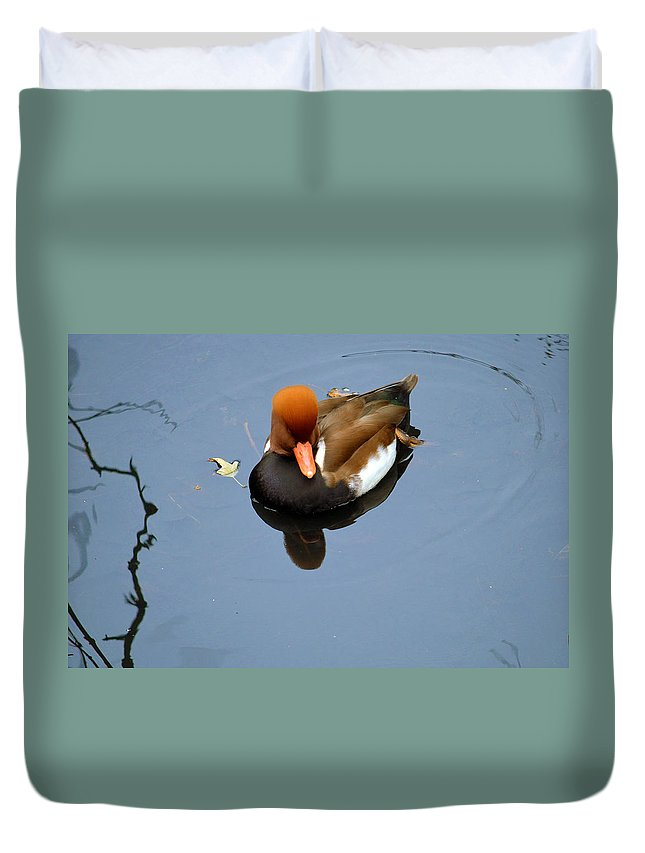 Ginger Duvet Cover featuring the photograph Fowl Ginger by Gary Mosman