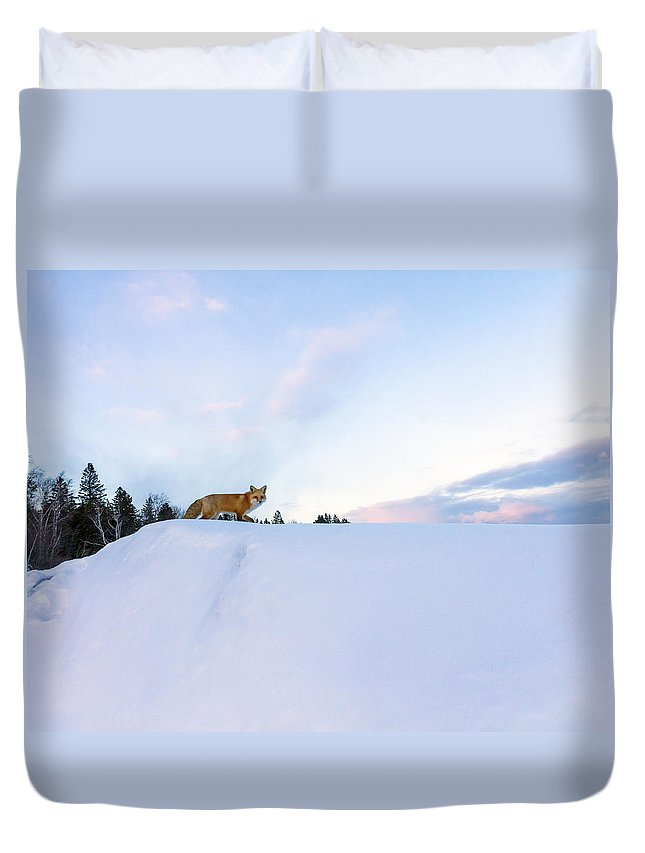 Red Fox Duvet Cover featuring the photograph Fox Of The North IIi by Mary Amerman