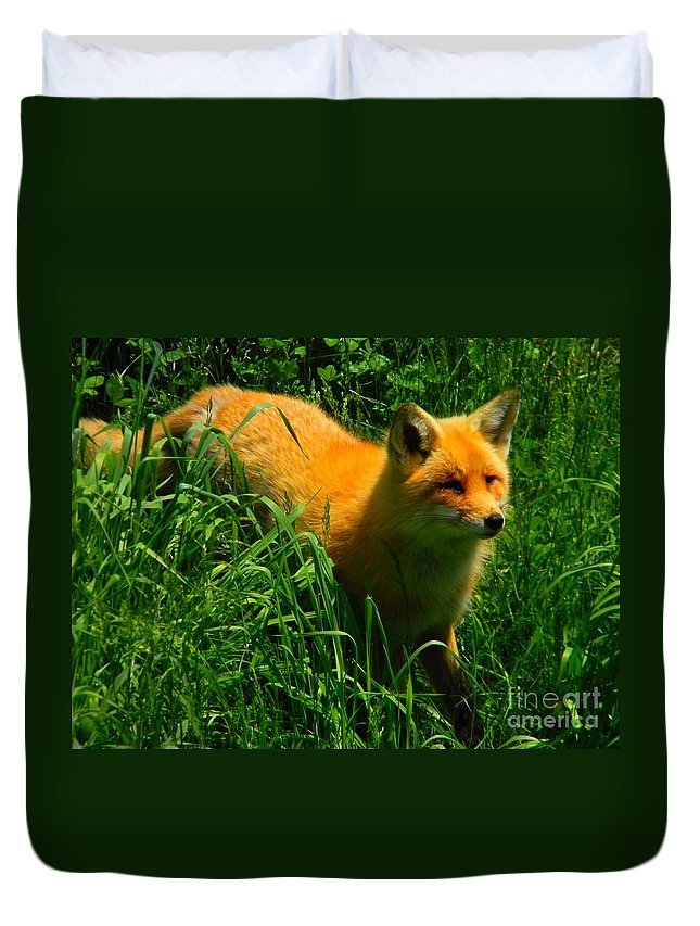 Red Fox Duvet Cover featuring the photograph Fox Trot by Owl's View Studio