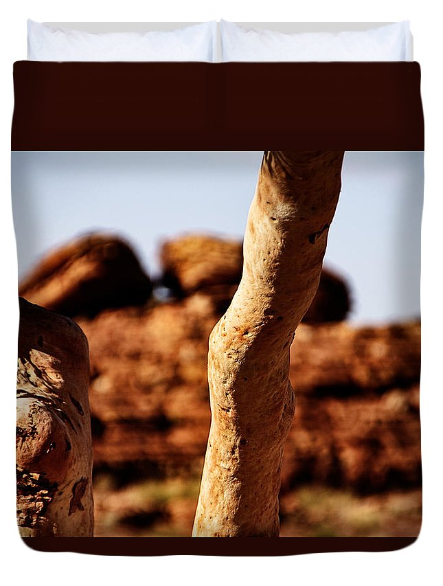 Nude Gum Tree Duvet Cover featuring the photograph Framed Rock by Douglas Barnard