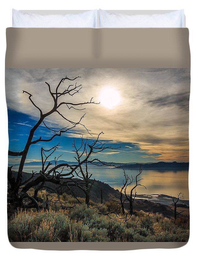 Gigimarie Duvet Cover featuring the photograph Frary Trail Trees by Gina Herbert