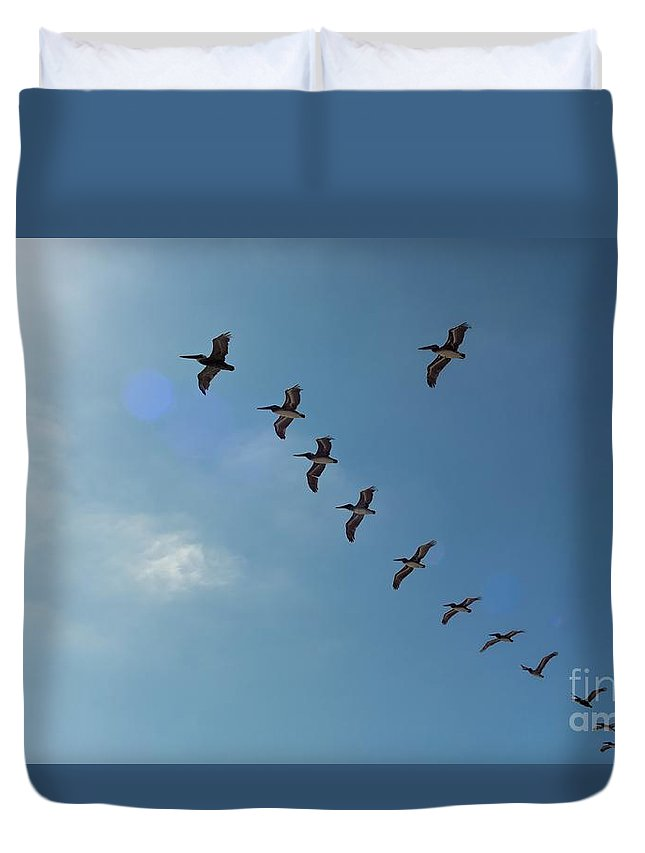 Sky Duvet Cover featuring the photograph Free Flight by Peggy Hughes