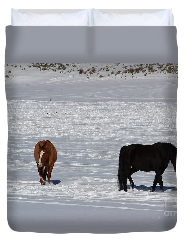 Horse Duvet Cover featuring the photograph Free Spirits by Fiona Kennard