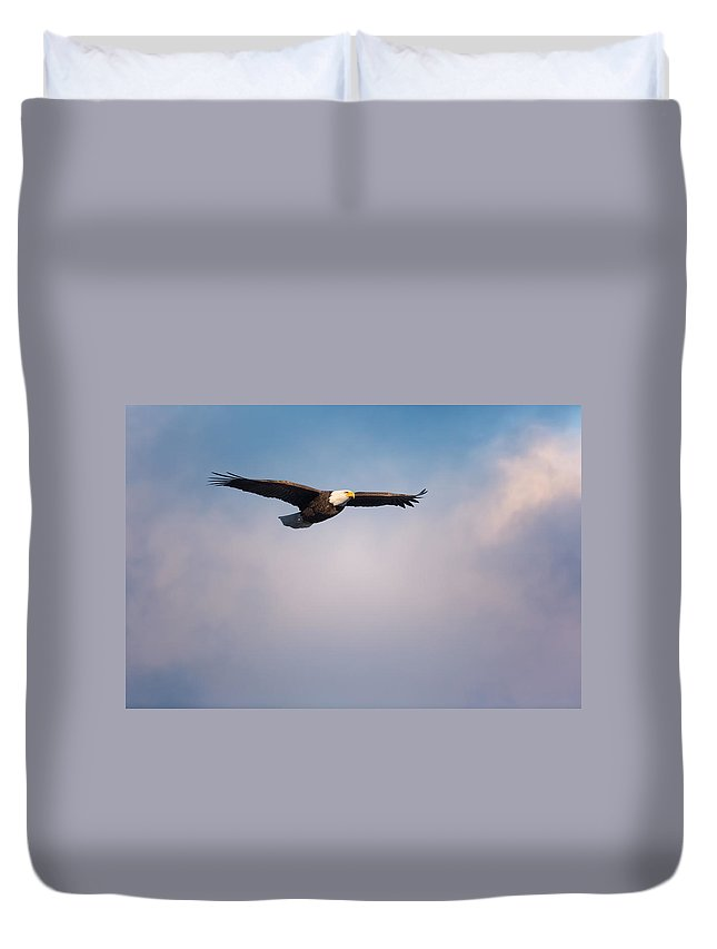 Eagle Duvet Cover featuring the photograph Freedom Flier by Bill Wakeley