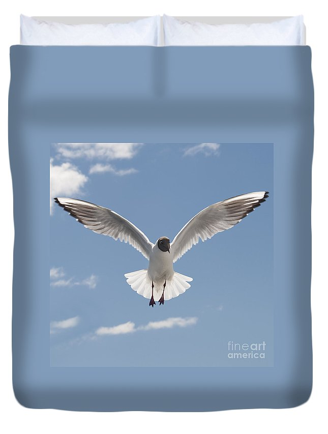 Festblues Duvet Cover featuring the photograph Freedom.. by Nina Stavlund