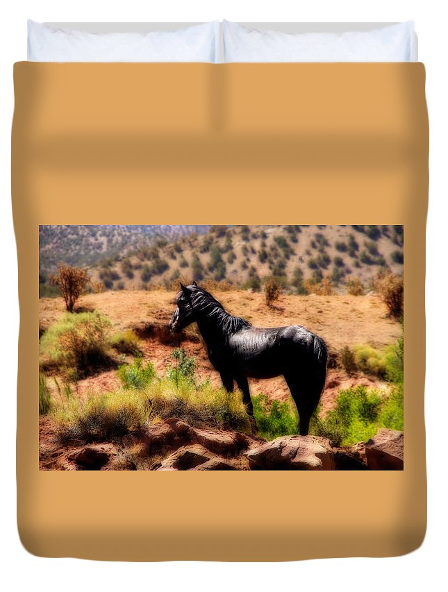 Horse Wild Equine Feral Mustang Desert Sw high Desert new Mexico Nm new Mexico Jeep Tours roch Hart Black Green Orton Free Freedom Home Duvet Cover featuring the photograph Freedoms's Home by Roch Hart
