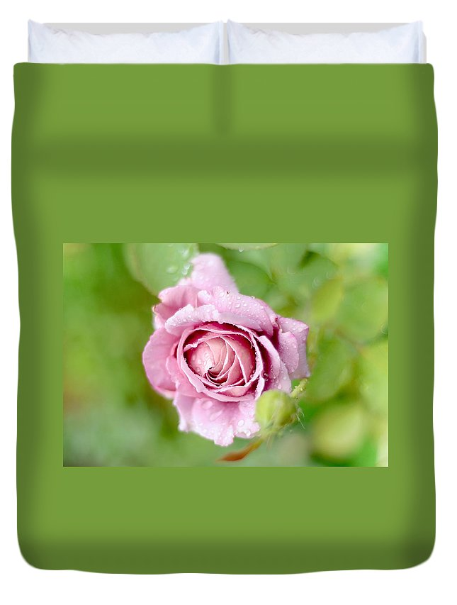 Rose Duvet Cover featuring the photograph Fresh Morning Rose by Jenny Rainbow