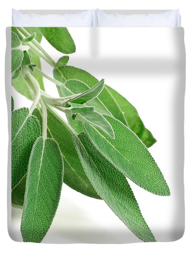 Aromatic Duvet Cover featuring the photograph Fresh Sage by Antonio Scarpi