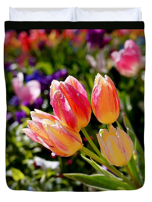 Tulips Duvet Cover featuring the photograph Fresh Tulips by Rona Black