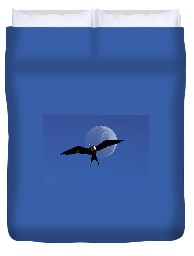 Frigate Duvet Cover featuring the photograph Frigatebird Moon by Jerry McElroy