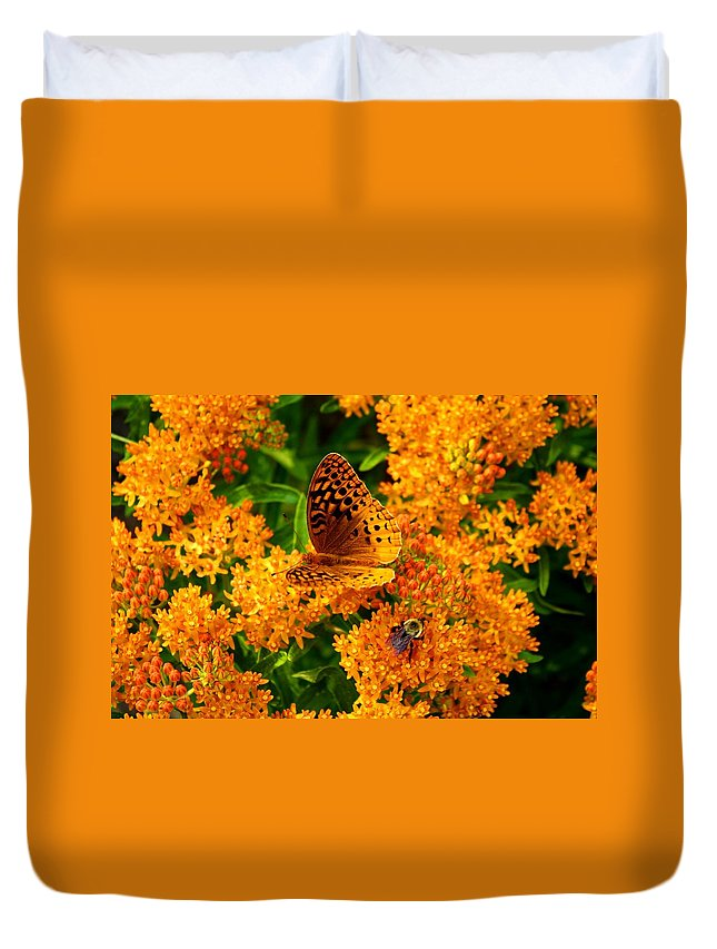 Fritillary Duvet Cover featuring the photograph Fritillary On Butterfly Weed by Kathryn Meyer