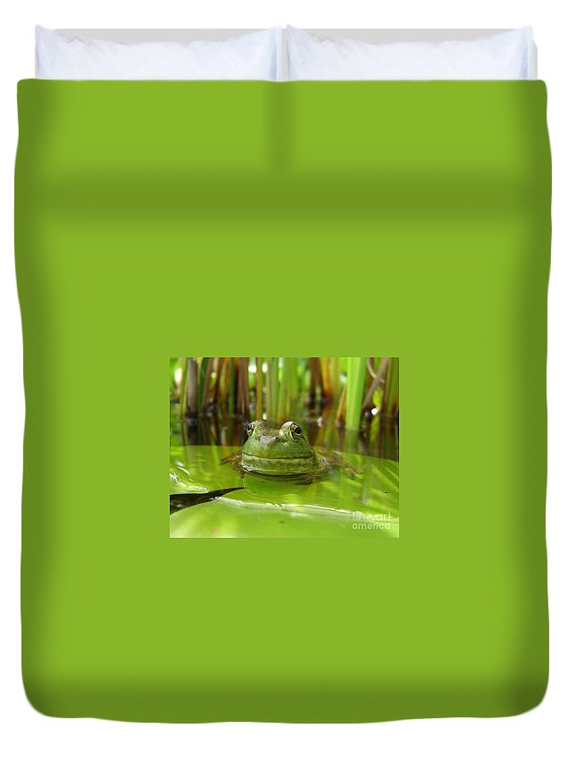 Frog Duvet Cover featuring the photograph Frog On Lily Pad by Jack Schultz