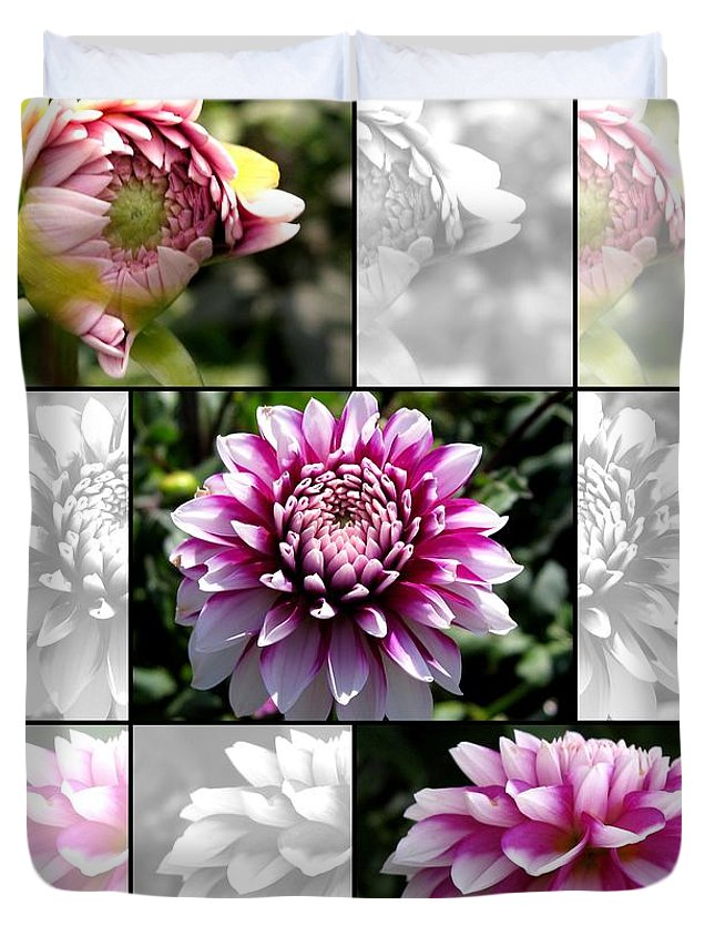 Dahlia Duvet Cover featuring the photograph From Bud To Bloom - Dahlia Named Brian Ray by J McCombie