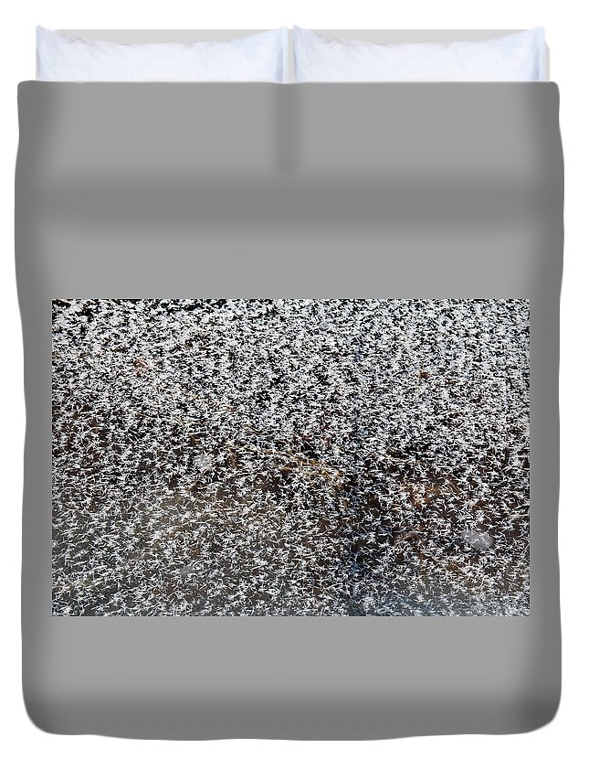 Frost Duvet Cover featuring the photograph Frost Flakes On Ice - 14 by Larry Jost