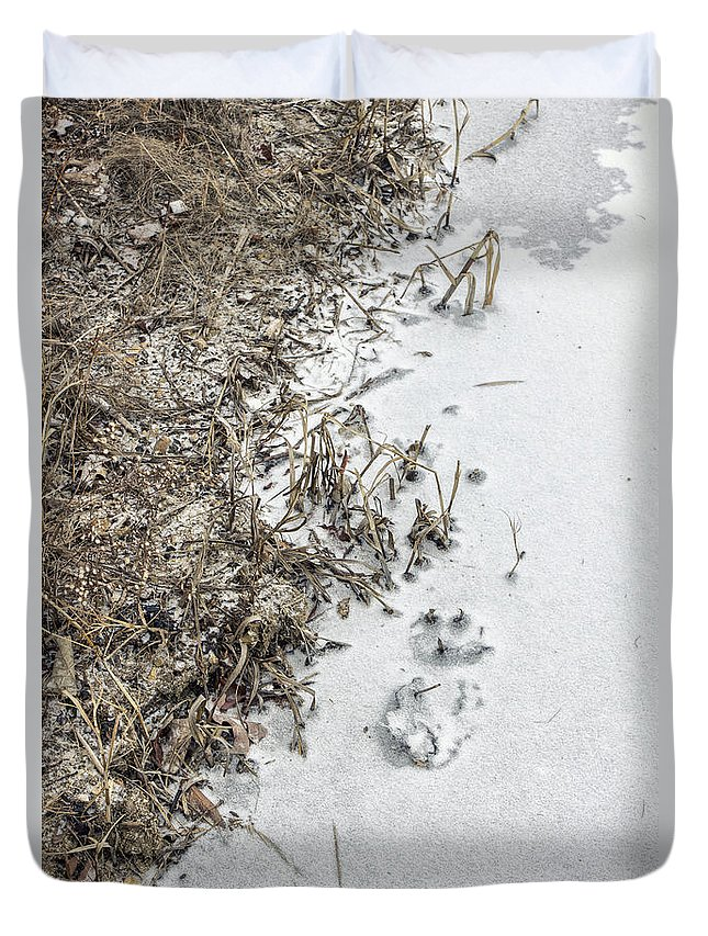 Outside; Outdoors; Rural; Country; Land; Nature; River; Water; Lake; Grasses; Grass; Front; Winter; Frozen; Snow; Ice; Cold; Dead; Dead; Death Duvet Cover featuring the photograph Frost by Margie Hurwich