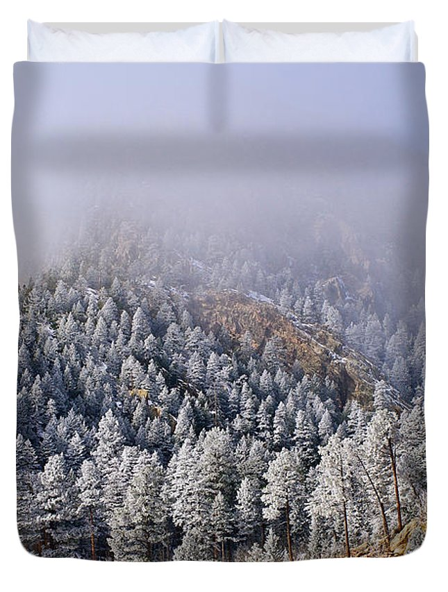 Colorado Photographs Duvet Cover featuring the photograph Frost On Cat's Feet Came by Gary Benson