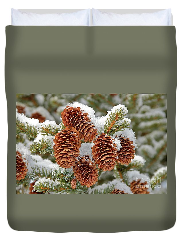 Cones Duvet Cover featuring the photograph Frosty Cones by Rick Monyahan