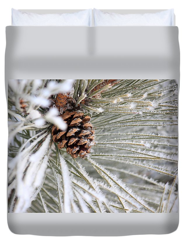Pine Cone Duvet Cover featuring the photograph Frosty Norway Pine by Penny Meyers