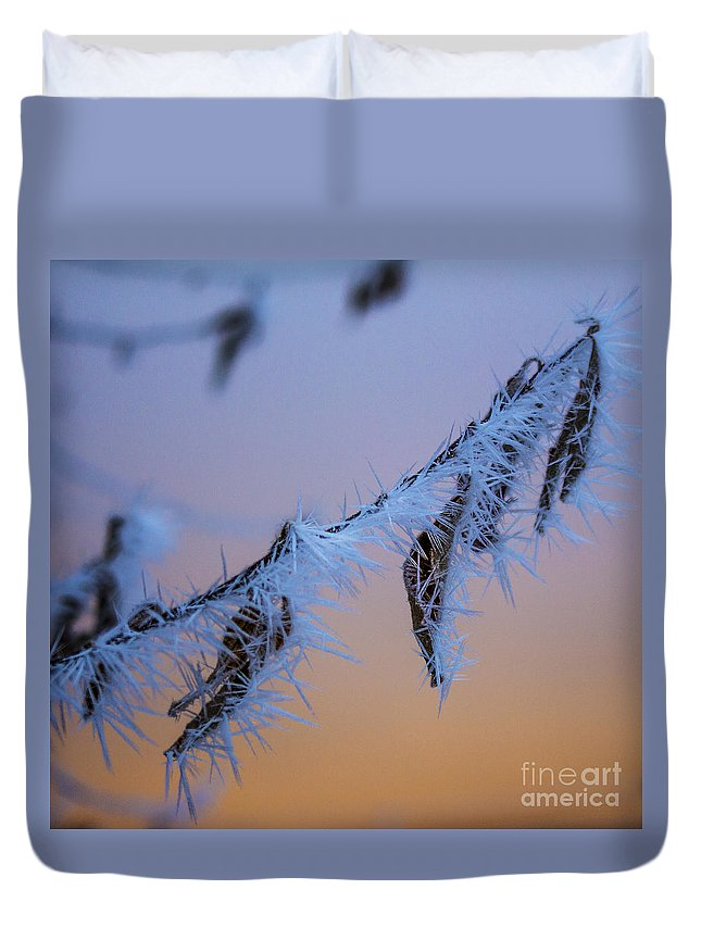 Background Duvet Cover featuring the photograph Frosty Sunrise by Andrea Goodrich