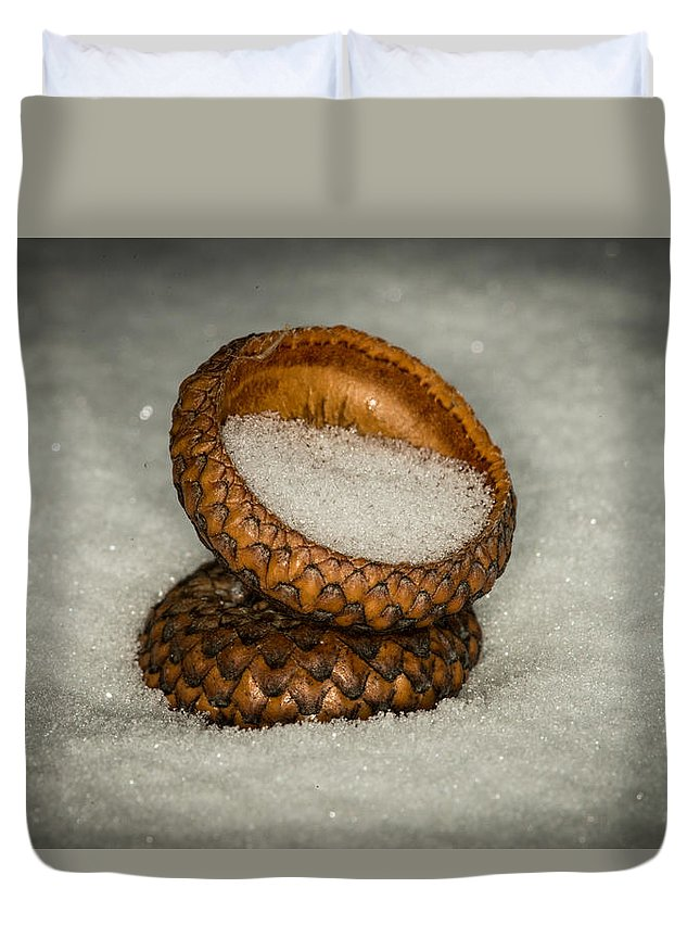 Nature Photograph Duvet Cover featuring the photograph Frozen Acorn Cupule by Paul Freidlund