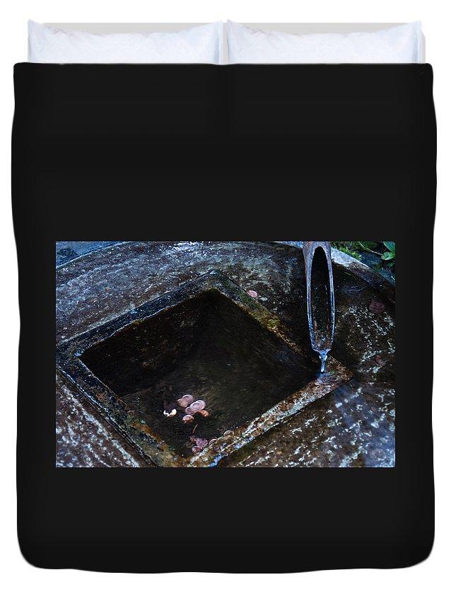 Frozen Garden Duvet Cover featuring the photograph Winter Wish by Roxy Hurtubise