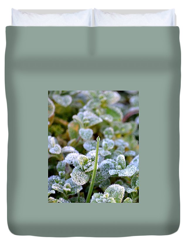 Frozen Green Spear Duvet Cover featuring the photograph Frozen Green Spear by Maria Urso