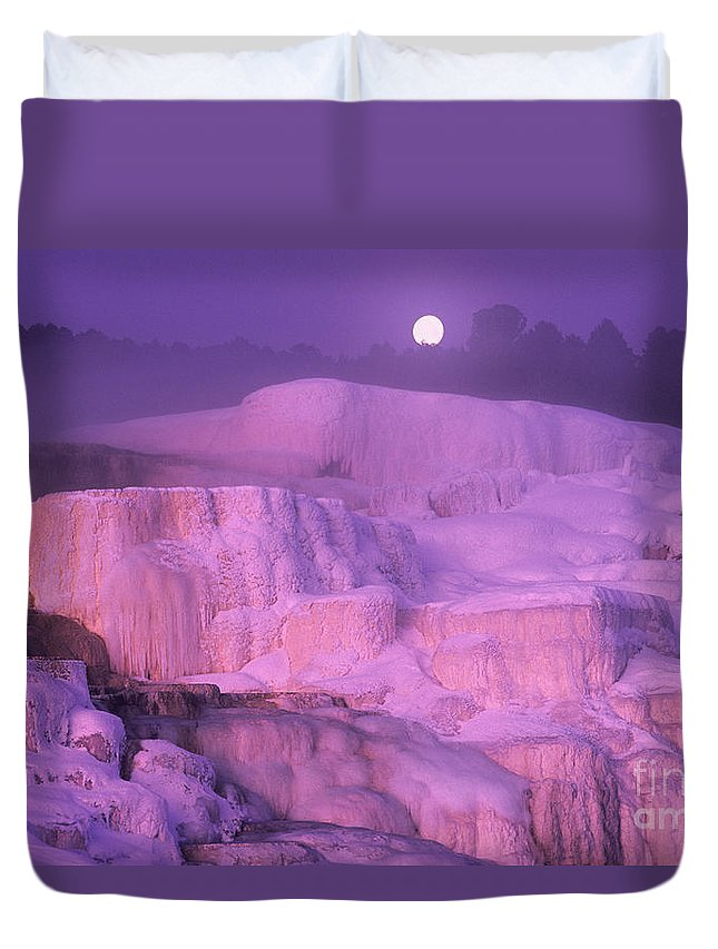 North America Duvet Cover featuring the photograph Full Moon Sets Over Minerva Springs On A Winter Morning Yellowstone National Park by Dave Welling